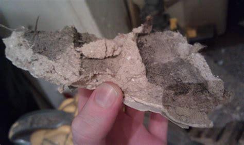 asbestos posted   pics community