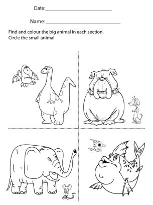 large and small worksheets