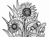 Grass Coloring Flowers Spring Flower Drawing sketch template