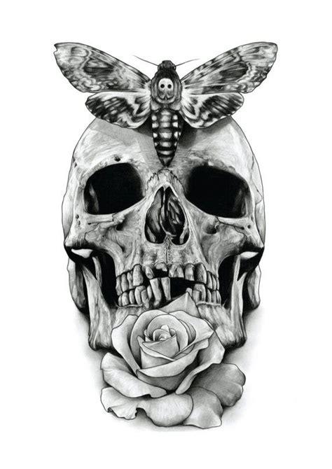 skull rose  deaths head hawk moth  aaronkingillustrator  cornucopia
