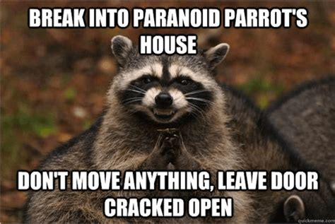Evil Raccoon Meme - 18 evil plotting raccoon memes that will make you nervously laugh just a little