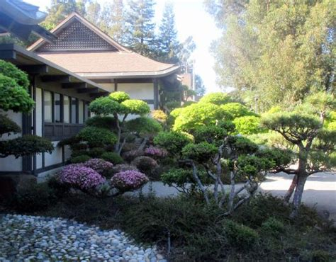 hayward japanese gardens ca top tips before you go
