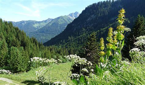 bureau d 騁ude environnement suisse bureau d etude environnement suisse 28 images bureau d