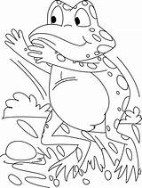 Frog Coloring Pages Frogs Tree Drawing Theme Cool Print Forget Supplies Don Getdrawings sketch template