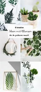 17 best images about garten balkon pflanzen on With whirlpool garten mit weihnachtliche deko für balkon