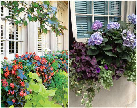Blumenkästen Bepflanzen Ideen by Wie Bepflanze Ich Meine Balkonk 228 Sten Richtig 19 Ideen Und