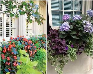 Blumenkästen Bepflanzen Sonnig : wie bepflanze ich meine balkonk sten richtig 19 ideen und beispiele ~ Frokenaadalensverden.com Haus und Dekorationen