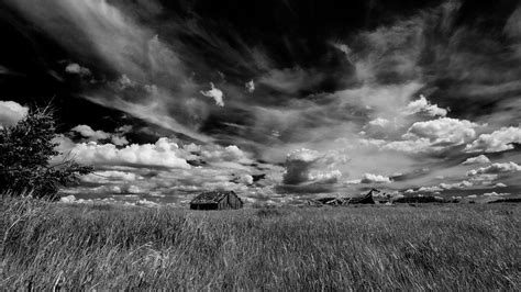 Wallpaper Black And White by Black And White Skies Wallpaper Allwallpaper In 13911