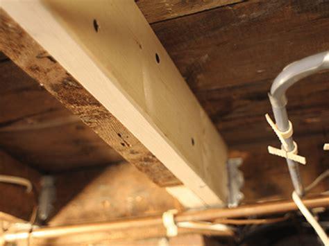 local contractor  repair  crawl space