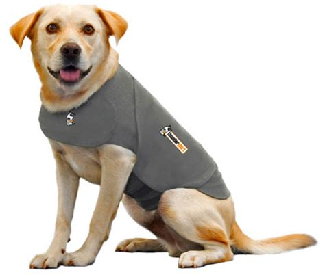 kennel sizes for travel 5 best anxiety shirt easy and efficient solution to