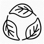 Organic Natural Icon Cosmetics Eco Bio Icons