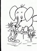 Coloring Animals Wild Animal Colouring Printable Popular Library Clipart Preschool sketch template