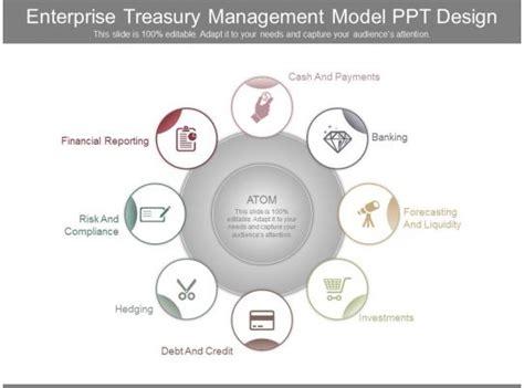 enterprise treasury management model  design