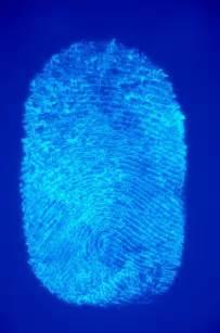 Biology DNA Fingerprinting
