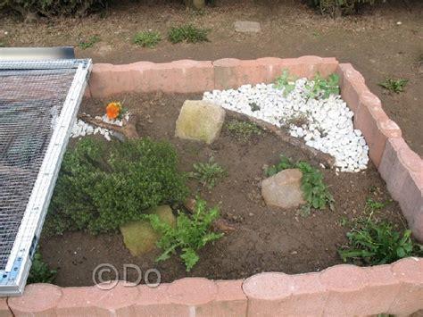 exemple d enclos pour tortues juv 233 niles