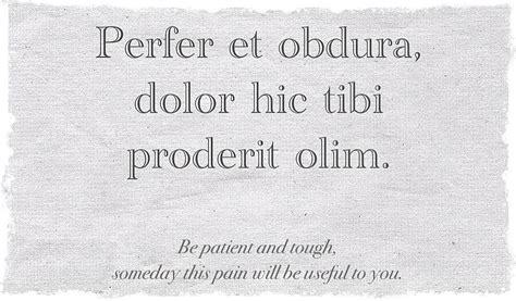 latin quotes ovid quotesgram