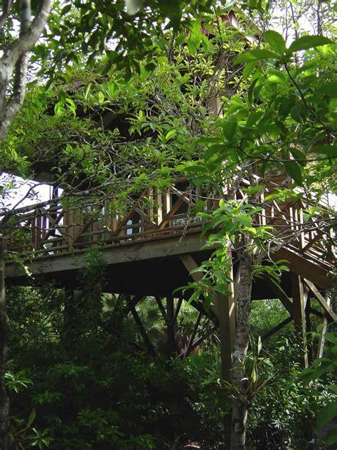 Belize Treehouse Hotel Rooms At Hamanasi Resort