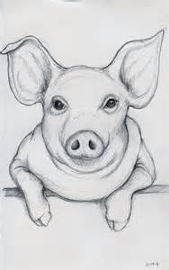 Pig Head Drawing Tumblr
