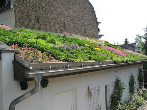 Extensive Dachbegrünung Garage Kosten by Bunte Dachbegr 252 Nung Eines Privathauses In K 246 Ln