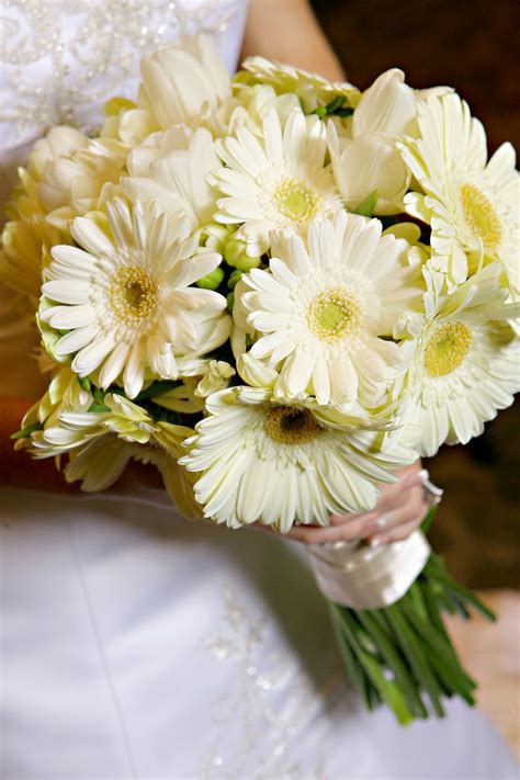 44 Best Images About Gerbera Wedding Flowers On Pinterest