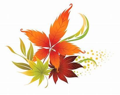 Clipart Fall Foliage Autumn Colours Clipground