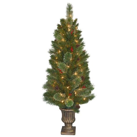 potted christmas trees buy potted christmas tree online santa s site