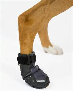 best dog boots ever good for hot or cold weather and they