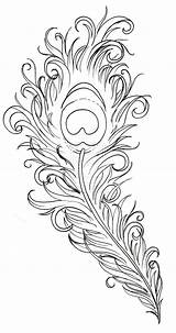 Peacock Coloring Feathers Pages sketch template