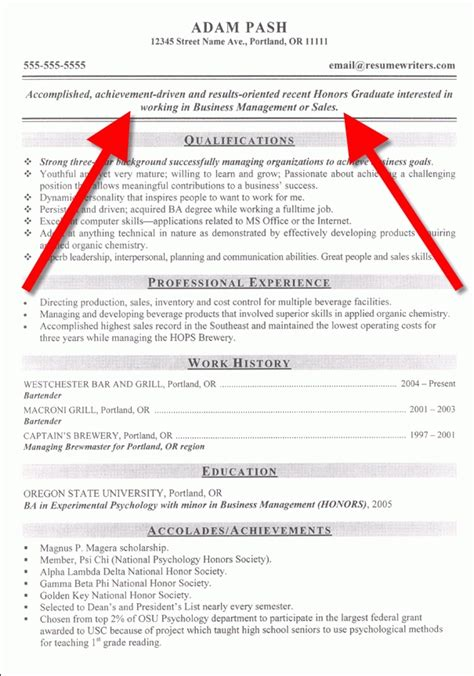 Resume Opening Statement resume opening statement apa exle