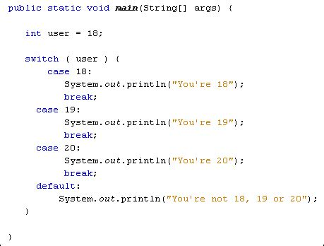 java  complete beginners switch statements