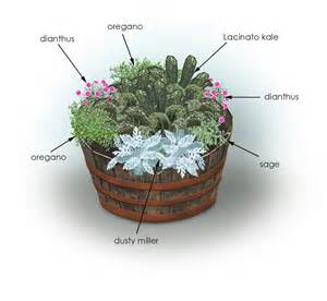 Herb Garden In Pots by Kale Flowers Amp Herbs Container Garden Bonnie Plants