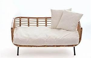 animal design decouvrir des offres en ligne et comparer With tapis moderne avec canapé lit pour chien