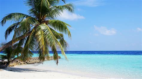 tear away thursday pic of the week those maldives beaches