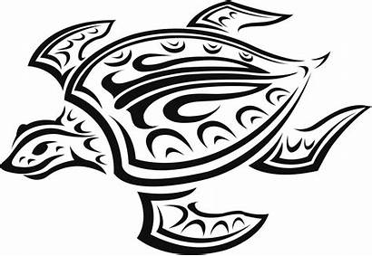 Tattoos Hawaiian Turtle Tattoo Designs Mens Extraordinary