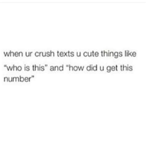 Cute Memes For Your Crush - when ur crush texts u cute things like who is this and how did u get this number crush meme on