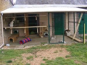 Maison Exterieur Pour Chat : le palace chats chatterie bor alis ~ Dailycaller-alerts.com Idées de Décoration
