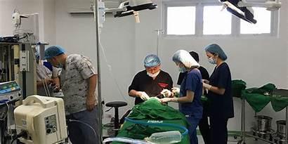Cleft Surgeries Comprehensive Care Journey Philippines Patients