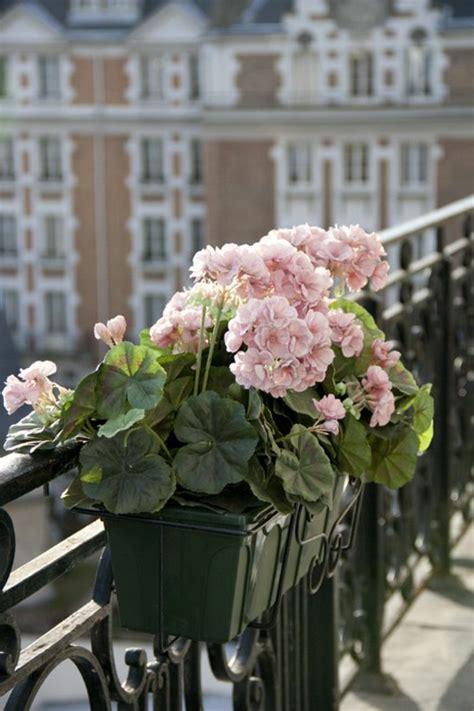 Blumen Für Den Balkon by Balkon Blumen F 252 R Eine Sch 246 Ne Au 223 Engestaltung Archzine Net