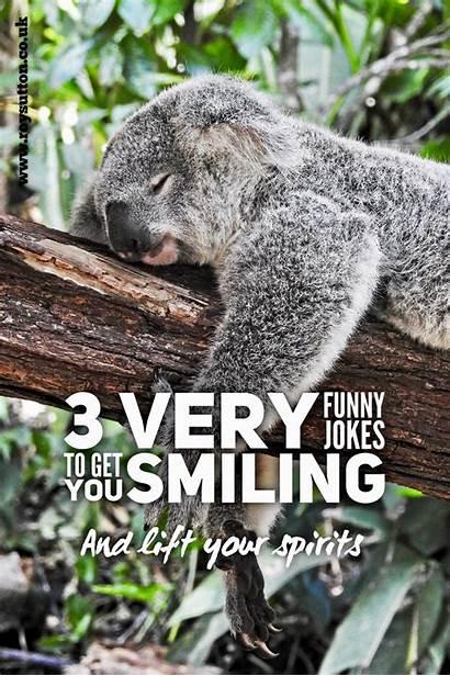 Jokes Funny Very Smiling Roy