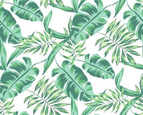 jungle leaves clip art jungle illustration plant leaves