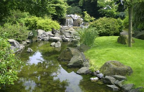 Different Types Of Gardens-what Are Specialty Gardens?