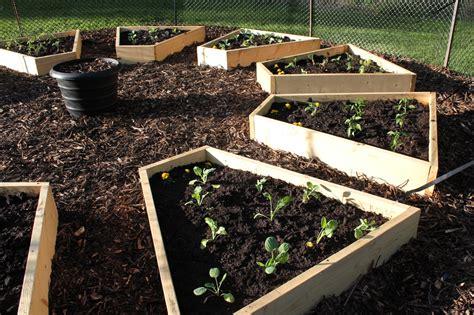 Raised Beds In The Medicine Wheel Garden Cabinorganic