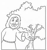 Mustard Seed Coloring Pages Parable Drawing Sheets Colouring Seeds Clipart Children Growing Print Getdrawings Ekladata Sunday Religion sketch template