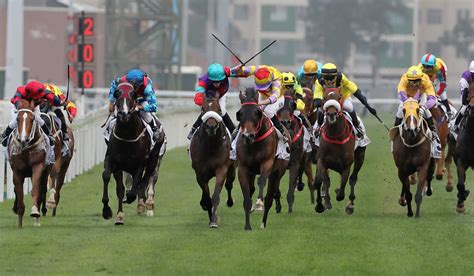Horse Racing In China