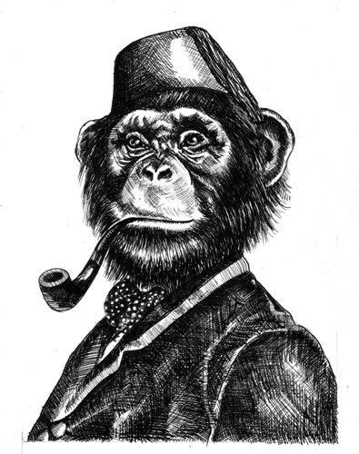 Face illustration, Monkey and Illustrations on Pinterest