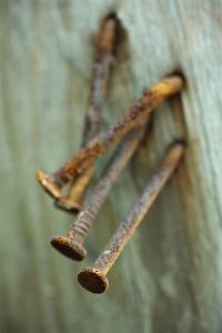 Rusty nails stuck in a wood Photo | Free Download