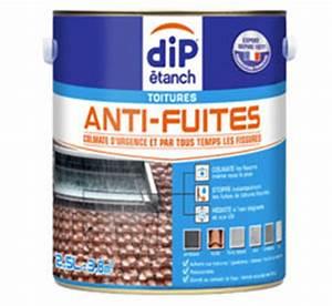 Pate Anti Fuite : mastic anti fuite mastic epoxy anti fuite 250 grs geb ~ Premium-room.com Idées de Décoration