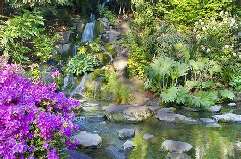 springs rhododendron garden 12 top tourist attractions in portland oregon
