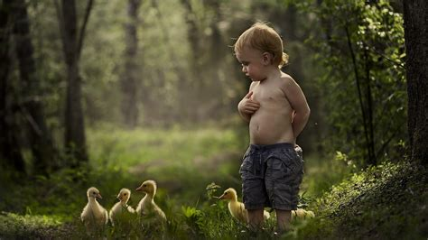 Childrens Animal Wallpaper - children geese shirtless baby animals birds forest