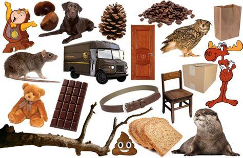 find  brown  blitz quiz